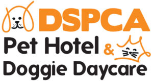 DSPCA Pet Hotel